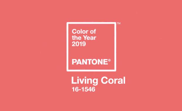 رنگ سال 2019 معرفی شد؛ رنگ مرجانی